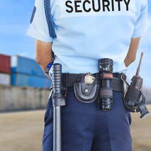 Security Guard at work